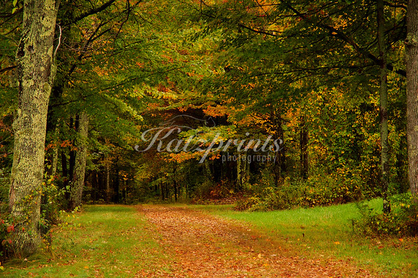 Autumn scene near the Canterbury Shaker village in New Hampshire
