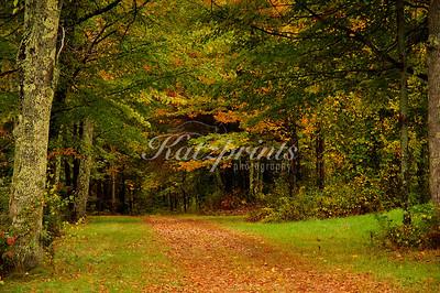 Autumn scene near the Canterbury Shaker village in New Hampshire