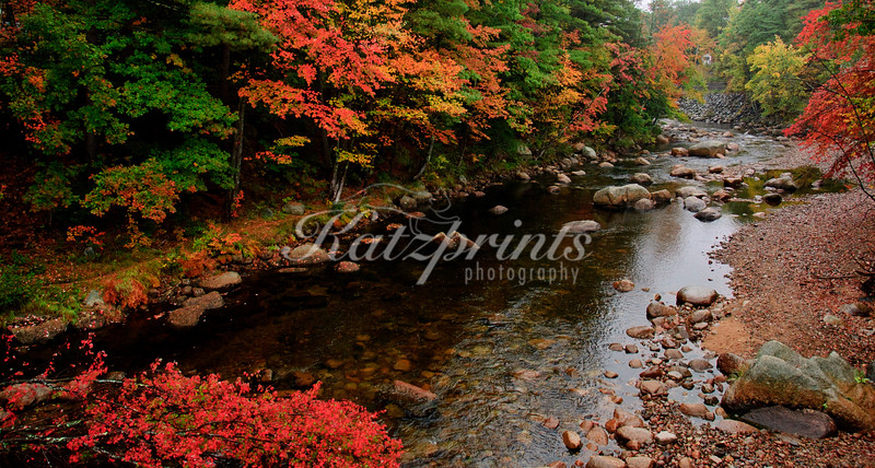Autumn scene at the Swift river in New Hampshire