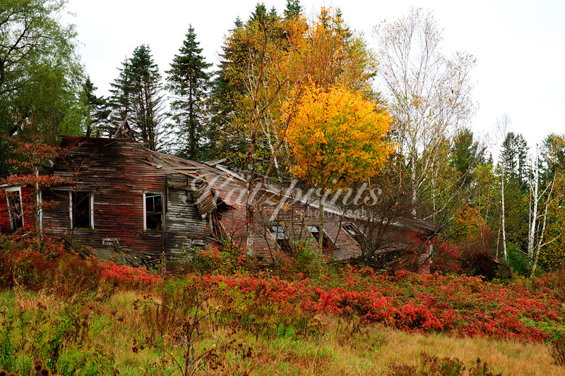 Collapsed house along a country road in Vermont
