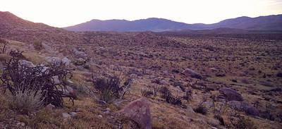 Day 1 - Sunrise Trailhead (Mile 59.5) to Scissors Crossing (Mile 77) - 17.5 trail miles