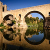 The 12th-century Romanesque bridge of Besalú is reflected in the Fluvià river.