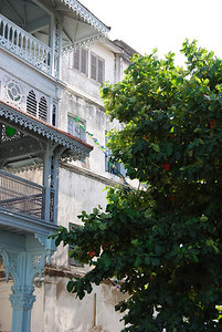 Zanzibar (86)