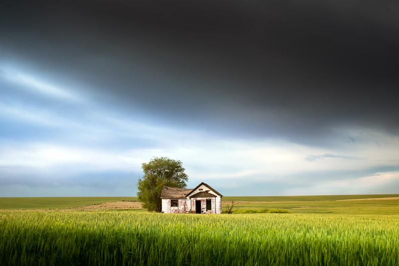 Abandoned Farmhouse, Spring 2020