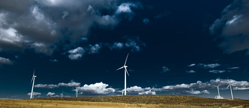 Wild Horse turbines at Ryegrass