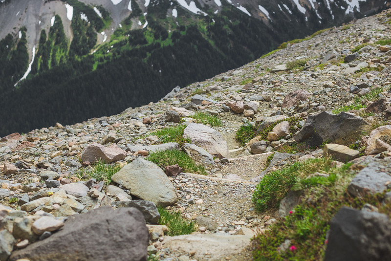 The steep descent from Third Burroughs to Glacier Basin