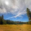 Yosemite Garden