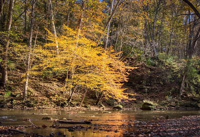 John Bryan State Park, Yellow Springs, Ohio  © 2019 Ryan L. Taylor Photography. All Rights Reserved.