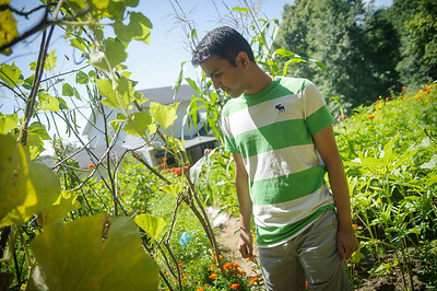 12-Sagar_garden
