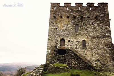 9 Dolwyddelan, Wales, United Kingdom