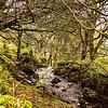33 Wales, United Kingdom Landscape