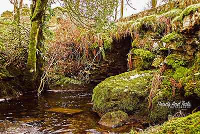 31 Mossy Bridge - Wales, United Kingdom