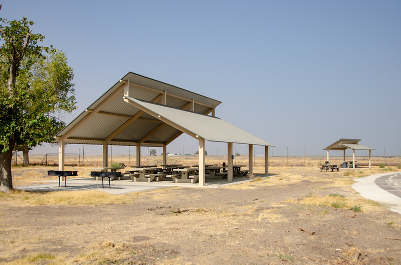 Shaded picnic area at Tule Elk State Natural Reserve