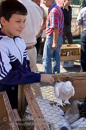 Boy and bird at the pigeon bazaar, Istanbul.