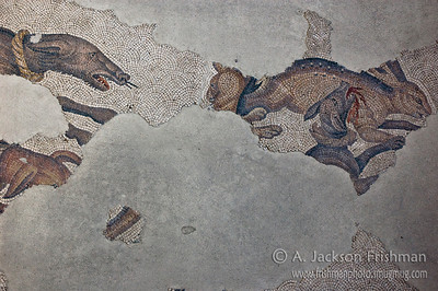 Byzantine  hound and hare mosaic, Istanbul.