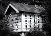 JHP 20190720-5 bird house BW