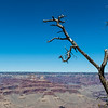 ARIZONA. GRAND CANYON. SOUTHERN RIM.