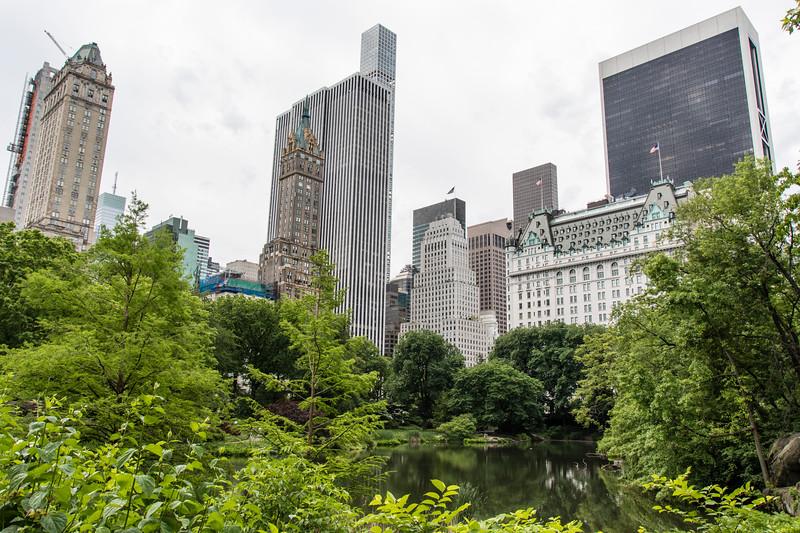 NEW YORK CITY. CENTRAL PARK.