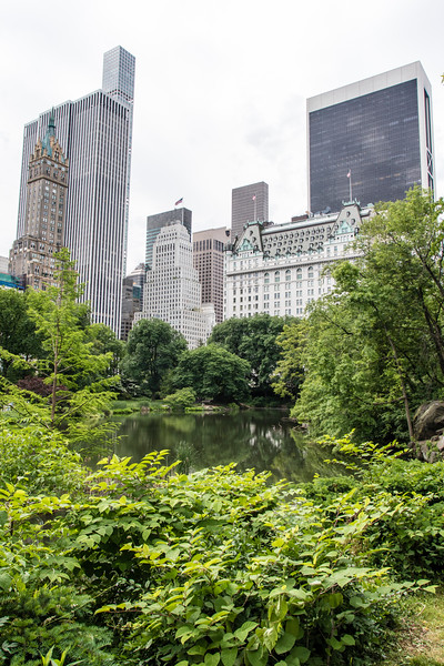 NEW YORK CITY. CENTRAL PARK.