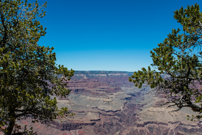 ARIZONA. GRAND CANYON.