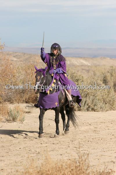 Owyhee Hallowed Weenies - DHRE-5289B Endurance Ride
