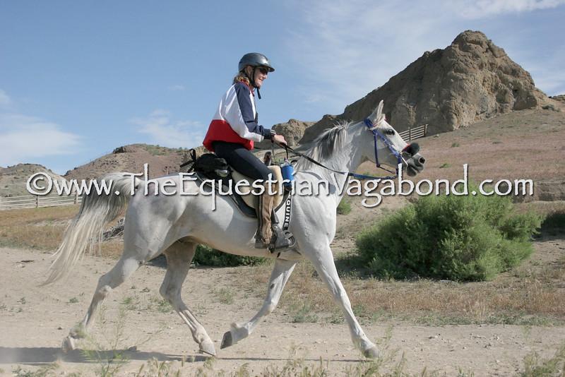 Owyhee Fandango - DHRE-5365A Endurance Ride