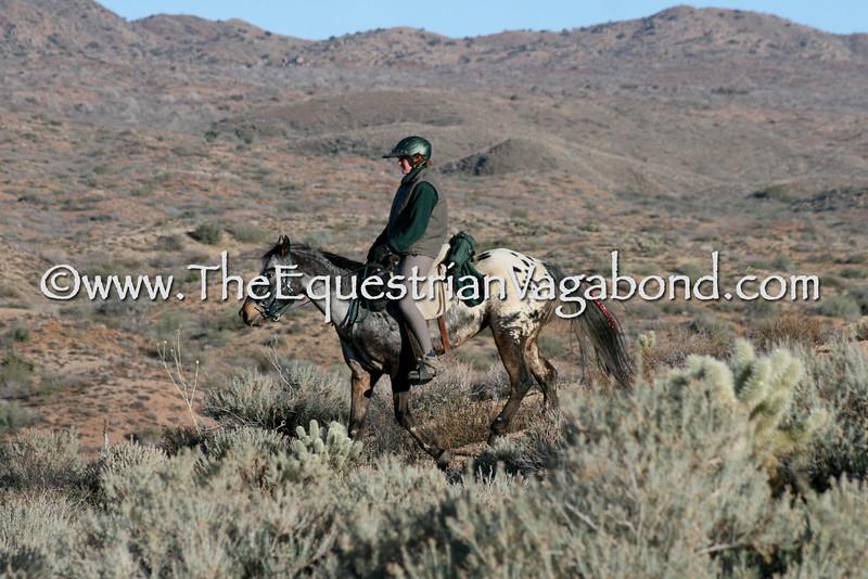 Resolution Ride - DHRE-5370C Endurance Ride