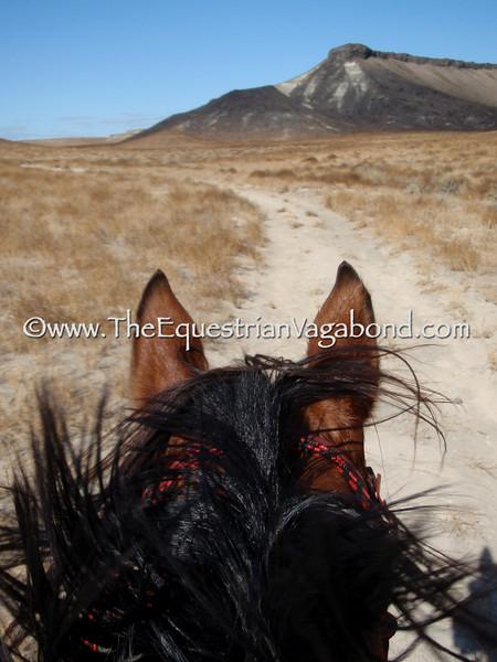 Owyhee Tough Sucker - DHRE-5366B Endurance Ride