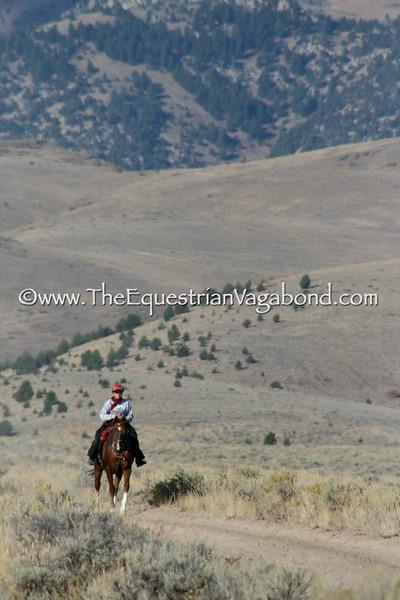 Owyhee Canyonlands - DHRE-5313B Endurance Ride