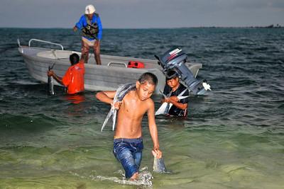 Unloading Dolphin fish at Kiribati