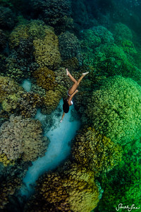 Talented singer, songwriter, and waterwoman, Kimie Miner, swimming amongst the immaculate coral reef on the Big Island of Hawaii.