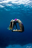 underwater yoga with donica shouse