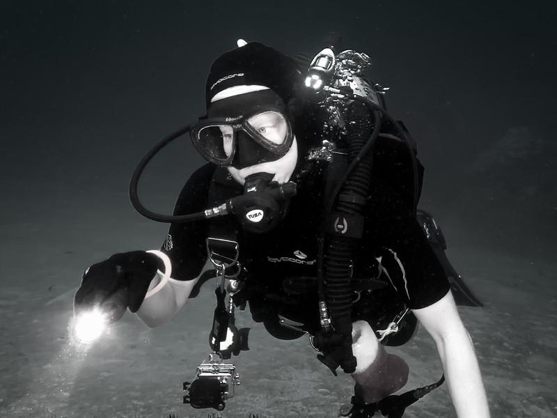 Dive Buddy
