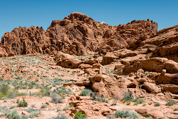 Valley of Fire-entrance to Mouse's Tank trail