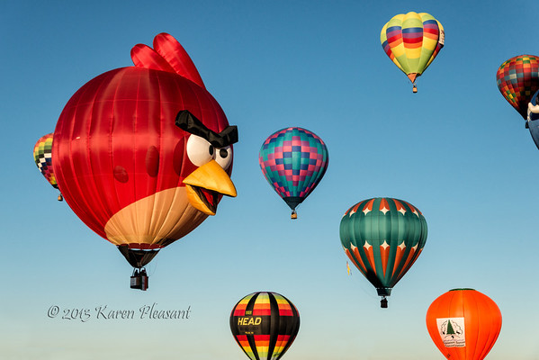 Angry Birds, United States