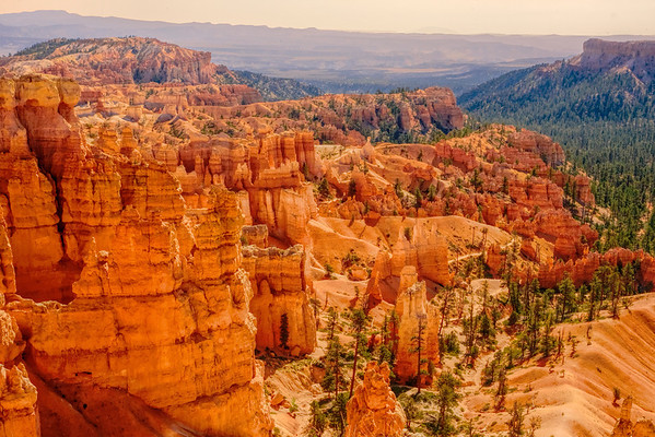 Bryce Trails