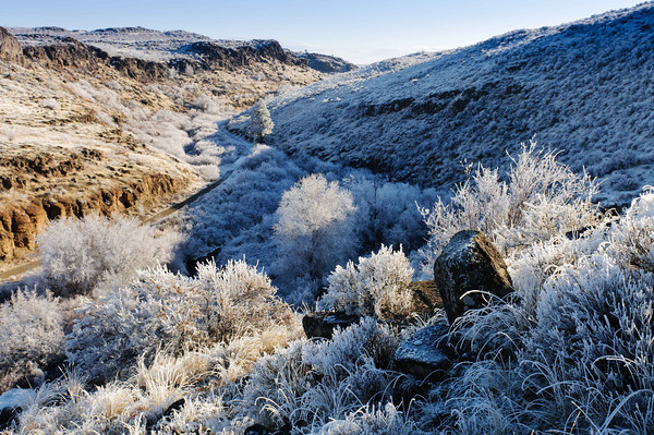 Frost makes the canyon a fantasy