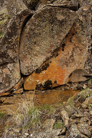 Lichen covered rock in Cowiche Canyon