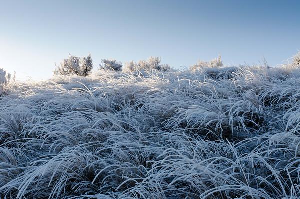 Cowiche_Canyon-SW_Ridge-Frost-121211-6112-Edit