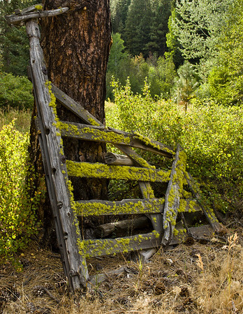 Wooden gate near Ahtanum Creek