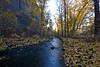 Manastash Creek - Kittitas Valley