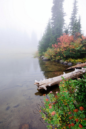 Lake Tipsoo - Mt. Rainier National Park