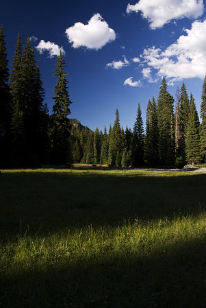Meadow at Pleasant Valley along the American Fork of the Naches River