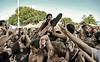 crowd surf-011