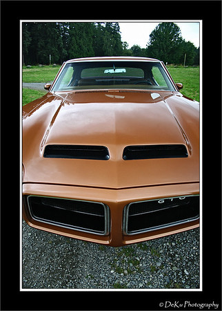 Brown 1972 GTO