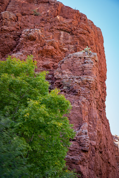 Red cliffs tower over the Verde Canyon Railroad.