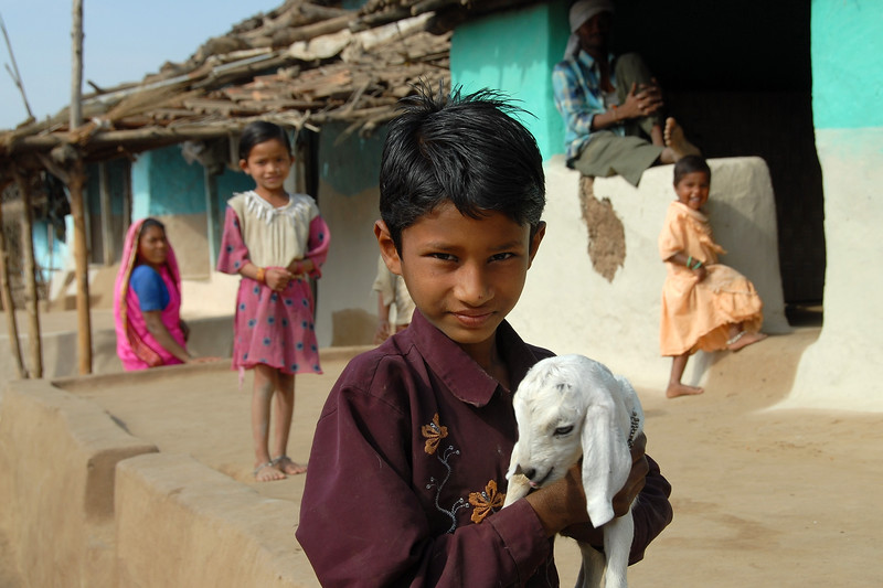 Children outside their village home playing with a young goat.