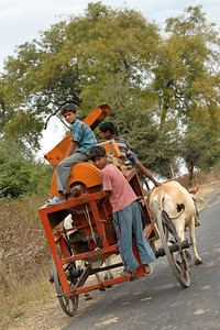Children hitching a ride on a bullock cart carrying a grain cutter.