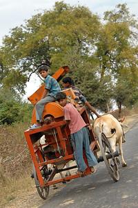 Children hitching a ride on a bullock cart carrying a grain cutter.
