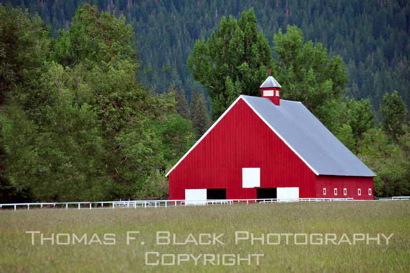 Seriously red barn on cattle ranch, Sierraville, CA. [UFP062510]